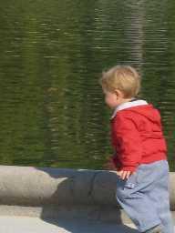 Little Guy Lux